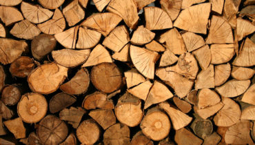 Agris Parcs & Jardins votre spécialiste en entretien et aménagement d'espace vert- élagage et abattage d'arbres